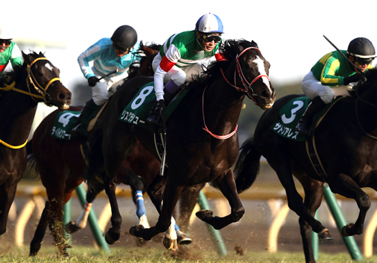 武豊、復帰レースで渾身の騎乗を見せるか!?ヴィクトリアマイルの「狙い馬」はコレ!の画像1