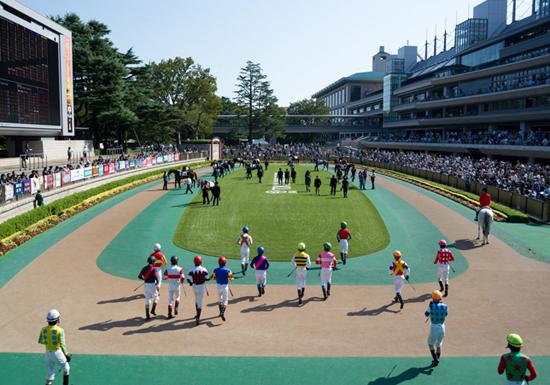 安田記念、過去20年で1番人気馬はわずか5勝の衝撃…今年も有力馬に不安要素が浮上の画像1