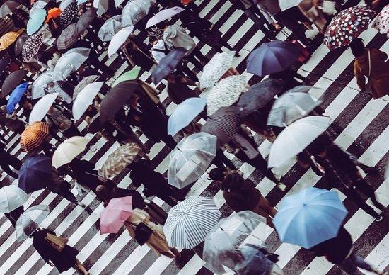 梅雨、ダルさや体調不良を解消する方法? なぜ短時間睡眠だと太る?の画像1