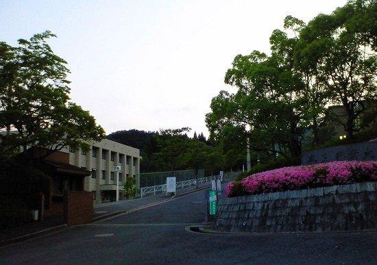 奈良学園大学、学部再編失敗で教員一斉強制解雇…学部新設で虚偽申請も