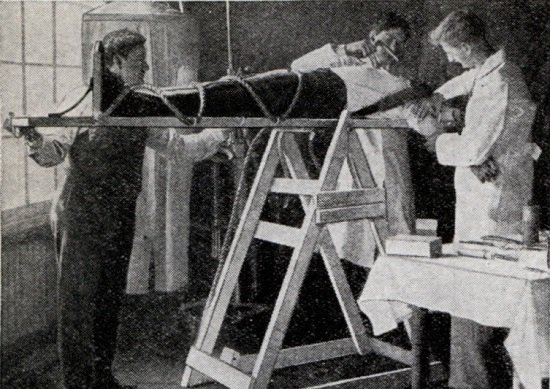 死人を蘇らせる研究…天才マッドサイエンティストが確立した(?)蘇生法