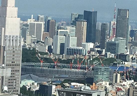東京都庁の無料「絶景」展望室に外国人観光客殺到…ダイヤモンド富士も夜景も一望の画像1