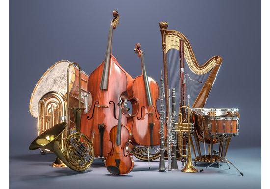 オーケストラ演奏家たちだけが知っている、中毒になる超絶の興奮と感動
