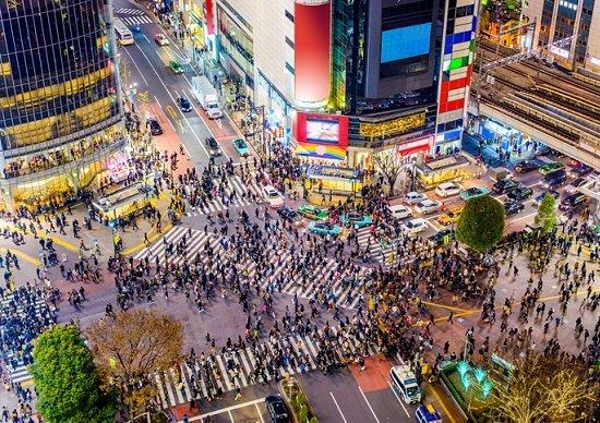 渋谷、大変貌の全容…大規模複合施設が続々、緑と潤いの「大人の街」化、人気飲食店も集結