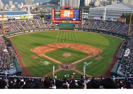 韓国のプロ野球、観客の7割が20~30代&女性殺到の秘密…野外フェス化で客熱狂の画像1
