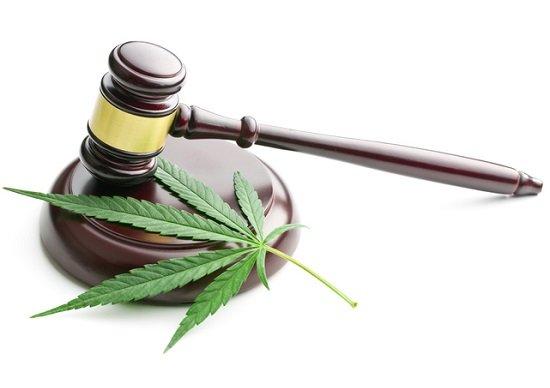 大麻が合法な国で日本人が所持・使用は違法…処罰の対象に