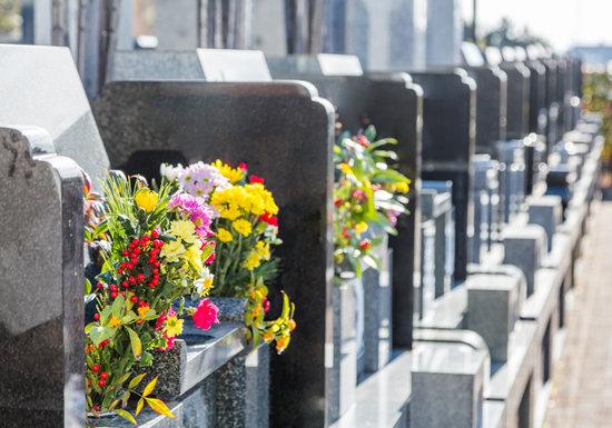 費用400万円?お墓がない!と慌てないために…格安の樹木葬や手元供養なら維持の悩み無用