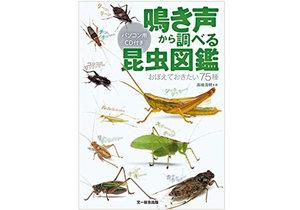 この鳴き声は何の虫? 鳴き声から調べる『昆虫図鑑』に注目の画像1
