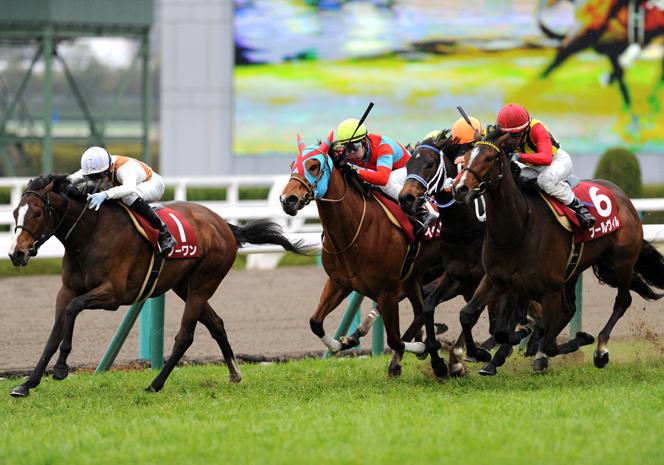 勝てないミルコ&ルメール、桜花賞は荒れる?武豊を手玉に取った2冠ジョッキーが推す馬は!