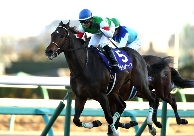 【JRA皐月賞】平成&令和にまたがる歴史的3冠馬誕生?混戦か1強か、オフレコ情報を入手