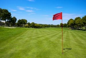 """ゴルフ場最大手、なぜ7割を売却?淘汰時代迎える""""斜陽""""業界、激化する生き残り競争"""