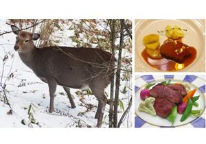 獣肉料理ジビエ、なぜブーム?取り扱い飲食店続々、衛生基準普及で全国的に流通が確立