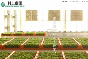 植物工場ブーム到来 野菜価格と品質の安定、日本の技術生かし海外展開と地方活性化加速の画像1