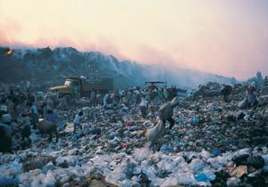 歌舞伎町浄化作戦が完了!風俗店を潰し、街と人々の生活を破壊 再開発という愚行