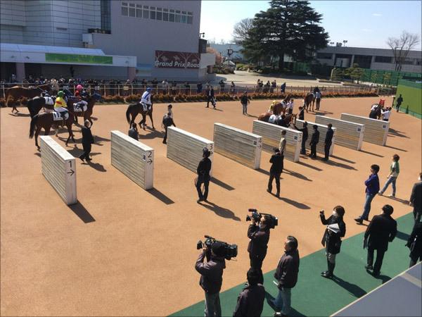 武豊ルメール不在で混沌・大阪杯(G1)は競馬界の「絶対的権力者」に従え!? 圧倒的実績を誇る「内部事情」に驚愕の画像2