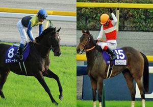 【徹底考察】大阪杯(G2) ラブリーデイ&ショウナンパンドラ「主役をめぐる激闘が幕を開ける」
