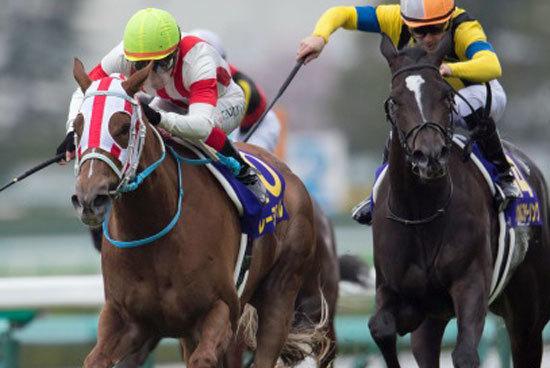レーヌミノルは常識覆す「第2のキタサンブラック」!? 距離不安が囁かれる今年の桜花賞馬がオークス(G1)で崩れない「動かぬ証拠」とはの画像1