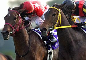 ブエナビスタと激戦、秋華賞馬レッドディザイア死す......挑戦を続けた馬生と、残された「3つの希望」