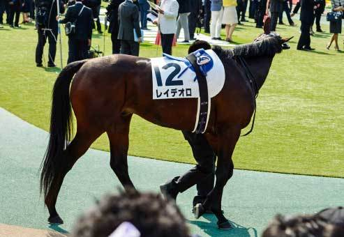 レイデオロ「全弟」がついにデビュー!オークス&日本ダービー「W制覇」クラシックの主役を務めた藤沢和雄厩舎は「2歳馬」も超良血揃い!