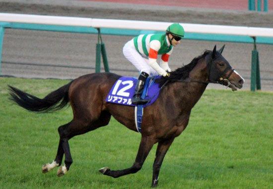 キタサンブラックと激闘を演じた素質馬が復活! クラシック制覇を期待されたリアファルが復帰戦へ向け好気配
