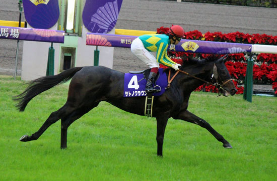 【徹底考察】大阪杯(G1)サトノクラウン「週末の晴れ予報で終了?アッと驚く勝利と不可解な大敗を繰り返す『よくわからない馬』を徹底検証」の画像1