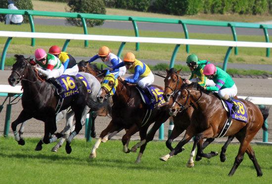 「夏を越せなかった」強豪馬たちが続々......無事だった秋競馬の「主役たち」にスタミナタイプが多いのは、現代競馬の「問題」が表出しているのか