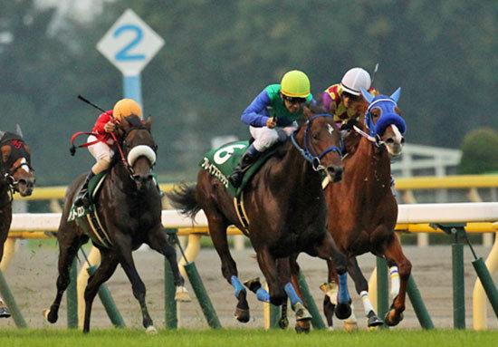 2歳王者・後のG1マイル戦線にも影響を与える重要な一戦! 個性豊かな素質馬が集結『サウジアラビアロイヤルC(G3)』に大注目!!