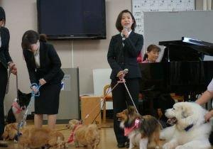 この春、犬4匹が<入社>~人々を元気にするセラピー犬、ファシリティドッグの活躍の画像1