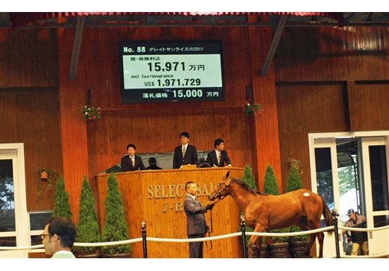 絶好調のサトノ軍団が競馬界を制圧。 里見治会長は7月のセレクトセールで20億円投入で素質馬買い占めか?