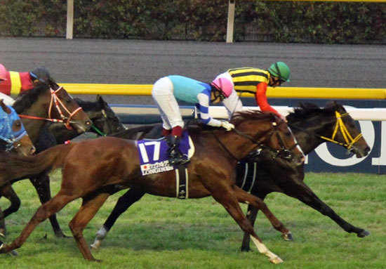 天皇賞・春で初戴冠を狙うシュヴァルグランに「嫌~な」データ?阪神大賞典2着馬はあの「歴史的名馬」すら惨敗したジンクスがの画像1