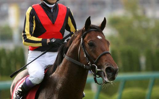 JRAの名門・堀宣行厩舎がまたも珍事を巻き起こす!? 今度はカリス・ティータン騎手を偏重起用?