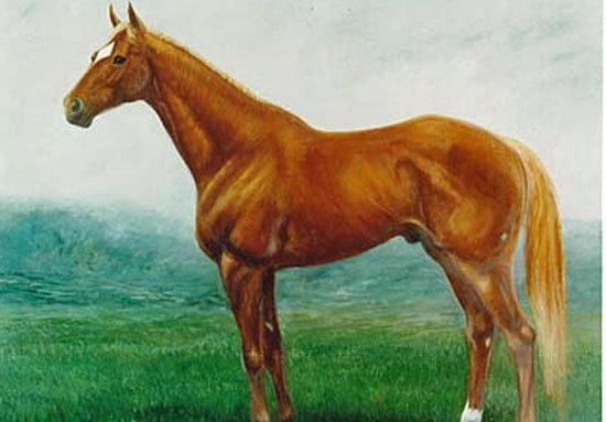 JRA史上最強マイラー・タイキシャトル種牡馬引退......次代は手薄もその伝説は色あせずの画像1
