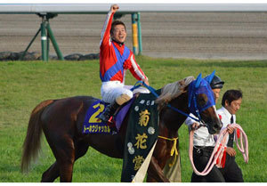 【徹底考察】阪神大賞典(G2) トーホウジャッカル「『3分間の奇跡』を再び見せる時がやってきた」