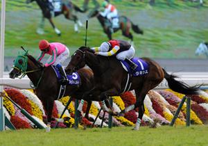 超難解な牝馬戦で7戦6勝!エリザベス女王杯、「的中したも同然」の裏情報をゲット!