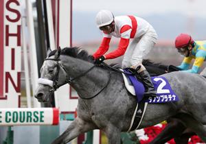 波乱必至の朝日FS&有馬記念 「万馬券的中のプロ」イチ推しは前走で負けたあの馬!