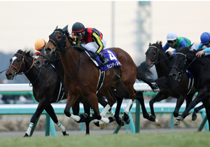 450億円も動く日本最大級の祭典、有馬記念!あの伝説の騎手たちがココだけの予想を公開