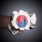 韓国、世界中のスポーツ界で嫌われるワケ~暴力誇示、相手を侮辱、負けると苦情