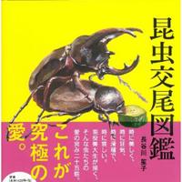 『昆虫交尾図鑑』トレース疑惑、「担当不在」繰り返す飛鳥新社と「企画協力者」の不可解