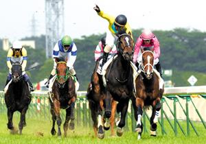 今週末の日本ダービー、10万人以上が集う競馬界最大の祭典 元競馬学校教師らの予想は?