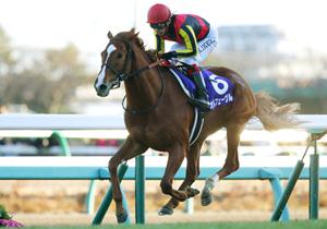 今週末の競馬、有馬記念 豪華予想家陣在籍の情報サイトが徹底研究