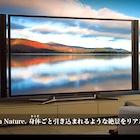 4Kテレビ商戦、東京五輪決定で幕開け〜期待高める電機業界、期待薄な需要予測とテレビ局