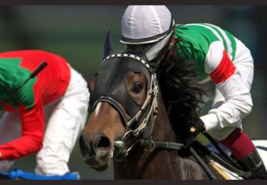 シーザリオ、ルージュバック、ハープスター、シンハライト......まさに名牝の歴史が復元した「史上最強の布陣」で挑むキャロットファーム2歳馬が目指すは「クラシック独占」