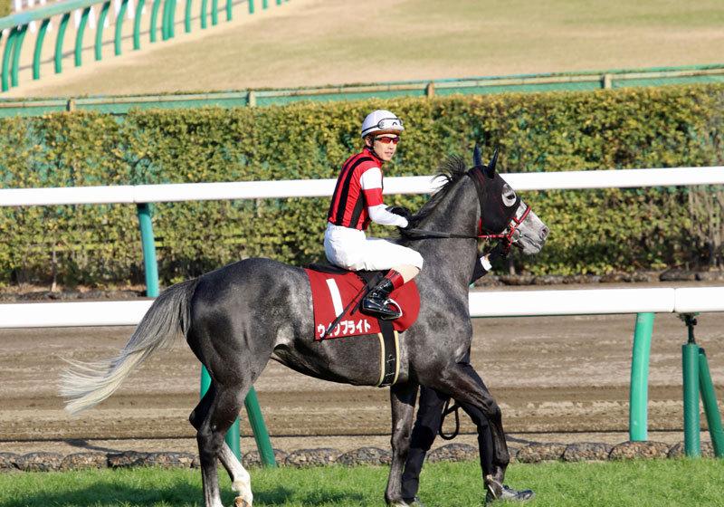 JRA「重賞100勝」中山の覇者ステイゴールドの「凄さ」歴史的名種牡馬たちに並ぶの画像1
