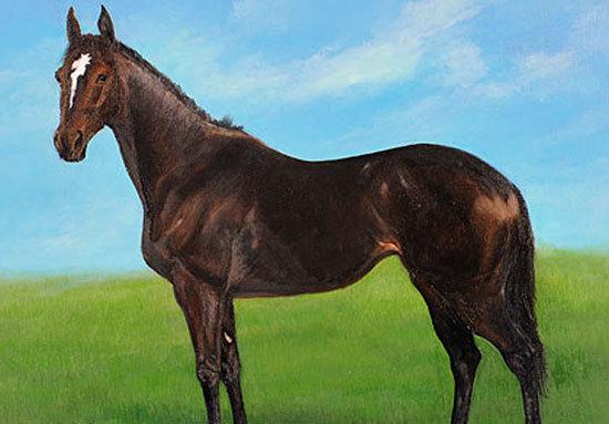 7冠牝馬・ウオッカは「弱かった...