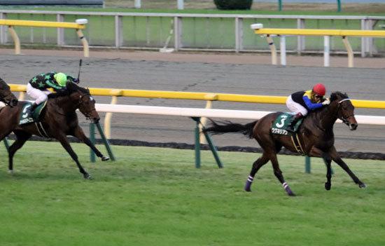 弥生賞(G2)ワグネリアン「調教師」がマカヒキとの違いを告白。史上8頭目の牡馬クラシック三冠へ、2年前のダービー馬になく「新怪物」が譲り受けたもの