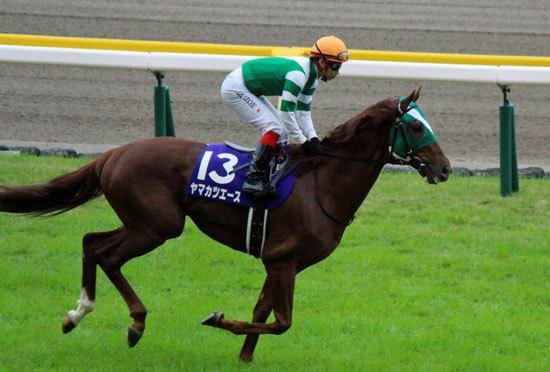 札幌記念(G2)2年連続敗退ヤマカツエースは夏に弱いのか? 最大のバロメータ「馬体重」が示す密接な関係と、秋のG1制覇を占う「2つ」の意味の画像1