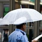 ビニール傘に付く