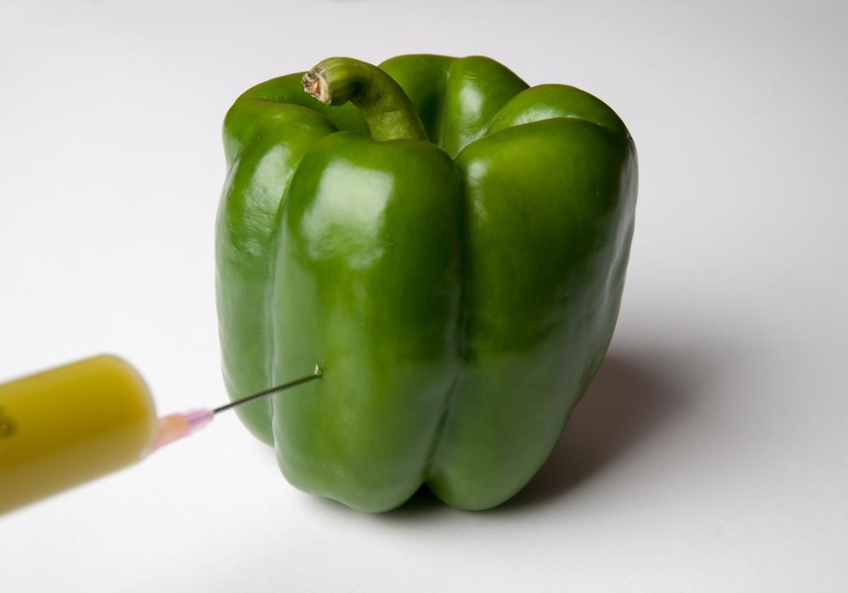 ゲノム 食品 と は