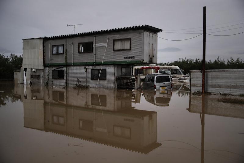 保険 水害