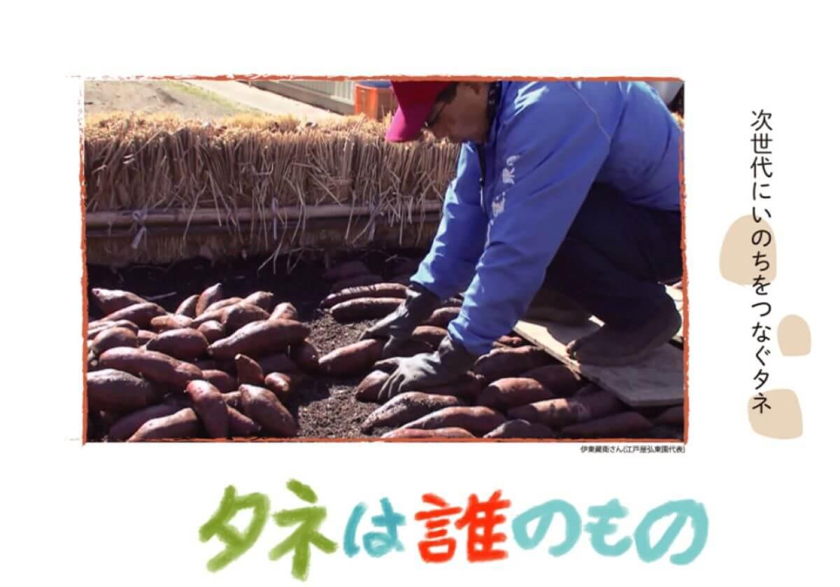 多国籍企業が種を独占し農家が破綻する懸念…映画『タネは誰のもの』種苗法改定案に警鐘の画像1